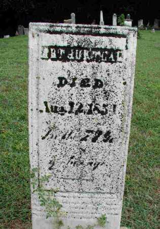 TEAL, ARTHUR - Fairfield County, Ohio   ARTHUR TEAL - Ohio Gravestone Photos