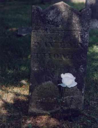 THOMAS, DAVID N. - Fairfield County, Ohio | DAVID N. THOMAS - Ohio Gravestone Photos