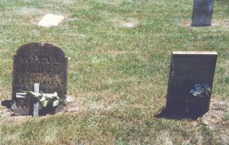 THOMAS, MARY ANN - Fairfield County, Ohio | MARY ANN THOMAS - Ohio Gravestone Photos