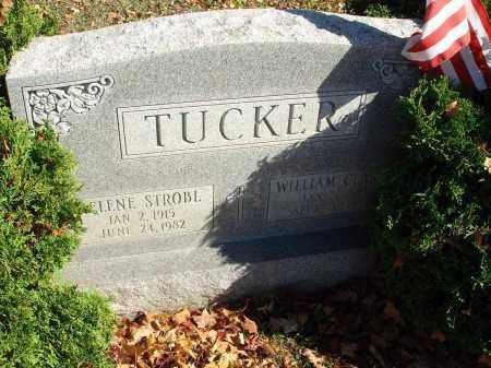 TUCKER, WILLIAM CLARKE - Fairfield County, Ohio | WILLIAM CLARKE TUCKER - Ohio Gravestone Photos