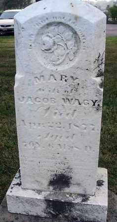 WAGY, MARY - Fairfield County, Ohio | MARY WAGY - Ohio Gravestone Photos
