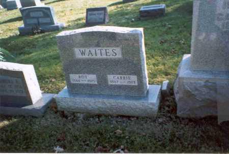 WAITES, CARRIE - Fairfield County, Ohio | CARRIE WAITES - Ohio Gravestone Photos