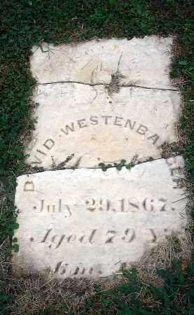 WESTENBARGER, DAVID - Fairfield County, Ohio | DAVID WESTENBARGER - Ohio Gravestone Photos
