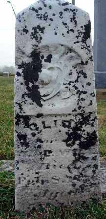 WILL, CLIDE? - Fairfield County, Ohio | CLIDE? WILL - Ohio Gravestone Photos