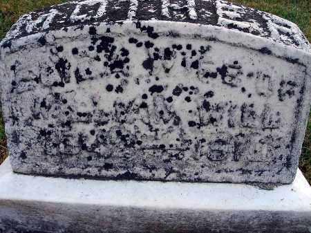 WILL, ELIZA - Fairfield County, Ohio | ELIZA WILL - Ohio Gravestone Photos