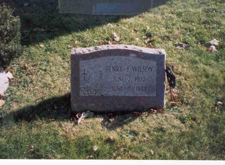 WILSON, HENRY J. - Fairfield County, Ohio   HENRY J. WILSON - Ohio Gravestone Photos