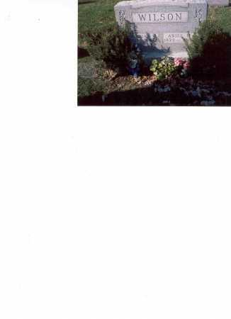 WILSON, WILLIAM H. - Fairfield County, Ohio | WILLIAM H. WILSON - Ohio Gravestone Photos