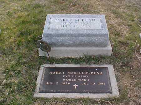 BUSH, HARRY MCKILLIP - Fayette County, Ohio | HARRY MCKILLIP BUSH - Ohio Gravestone Photos