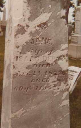 STAFFORD DEPOY, JANE - Fayette County, Ohio | JANE STAFFORD DEPOY - Ohio Gravestone Photos