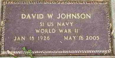 JOHNSON, DAVID W - Fayette County, Ohio | DAVID W JOHNSON - Ohio Gravestone Photos