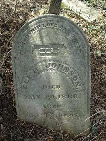 P. JOHNSON, EIL - Fayette County, Ohio | EIL P. JOHNSON - Ohio Gravestone Photos