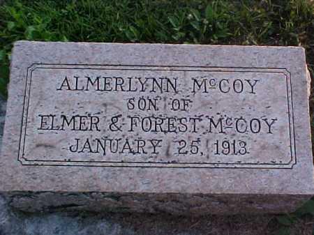MCCOY, AMERLYNN - Fayette County, Ohio | AMERLYNN MCCOY - Ohio Gravestone Photos