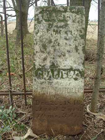 MCKILLIP, CLARISSA - Fayette County, Ohio | CLARISSA MCKILLIP - Ohio Gravestone Photos