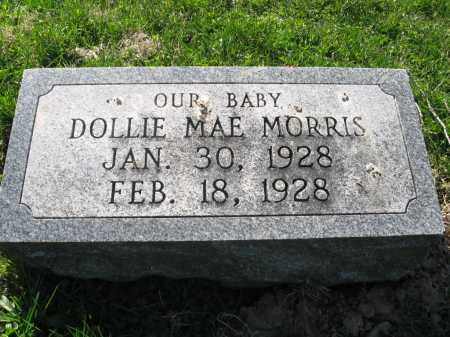 MORRIS, DOLLIE MAE - Fayette County, Ohio | DOLLIE MAE MORRIS - Ohio Gravestone Photos