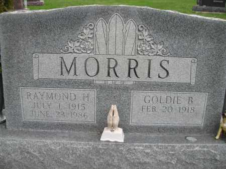 MORRIS, GOLDIE BELLE - Fayette County, Ohio | GOLDIE BELLE MORRIS - Ohio Gravestone Photos