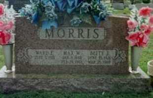 MORRIS, WARD F - Fayette County, Ohio | WARD F MORRIS - Ohio Gravestone Photos