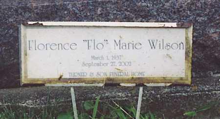 WILSON PIERCE, FLORENCE MARIE - Fayette County, Ohio | FLORENCE MARIE WILSON PIERCE - Ohio Gravestone Photos