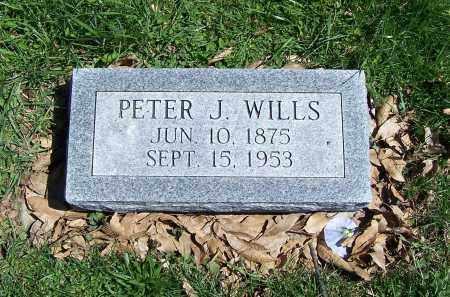 WILLS, PETER J. - Fayette County, Ohio | PETER J. WILLS - Ohio Gravestone Photos