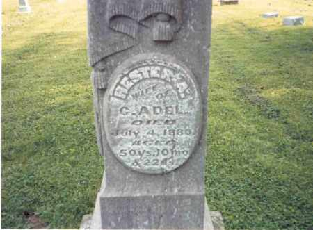 RAINIER ADEL, HESTER A. - Franklin County, Ohio | HESTER A. RAINIER ADEL - Ohio Gravestone Photos