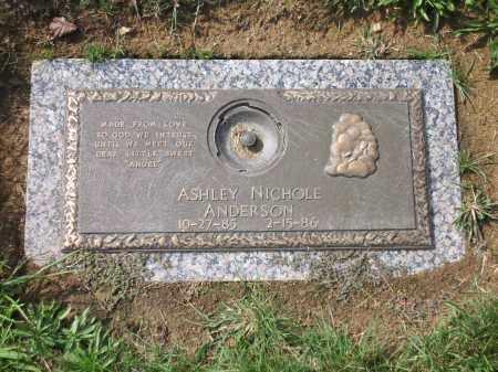 ANDERSON, ASHLEY NICOLE - Franklin County, Ohio   ASHLEY NICOLE ANDERSON - Ohio Gravestone Photos