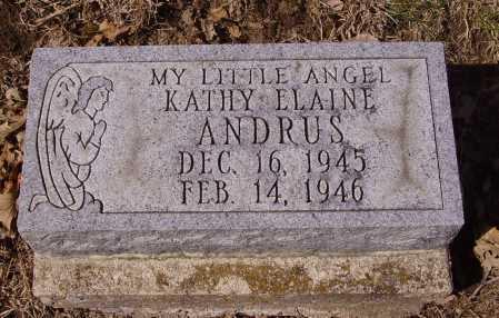 ANDRUS, KATHY ELAINE - Franklin County, Ohio | KATHY ELAINE ANDRUS - Ohio Gravestone Photos