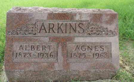 ARKINS, AGNES - Franklin County, Ohio | AGNES ARKINS - Ohio Gravestone Photos