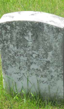 BADGER, CHARLES - Franklin County, Ohio | CHARLES BADGER - Ohio Gravestone Photos
