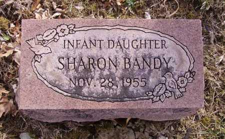 BANDY, SHARON - Franklin County, Ohio   SHARON BANDY - Ohio Gravestone Photos