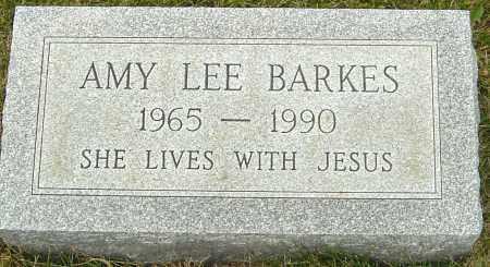 BARKES, AMY LEE - Franklin County, Ohio | AMY LEE BARKES - Ohio Gravestone Photos