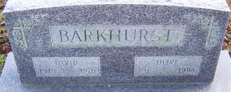 BARKHURST, OLIVE - Franklin County, Ohio | OLIVE BARKHURST - Ohio Gravestone Photos