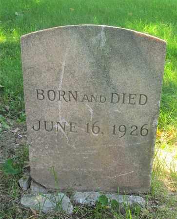 BEARD, SHIRLIE ANN - Franklin County, Ohio | SHIRLIE ANN BEARD - Ohio Gravestone Photos
