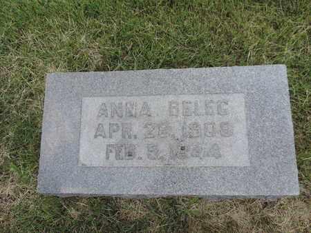 BELEC, ANNA - Franklin County, Ohio | ANNA BELEC - Ohio Gravestone Photos