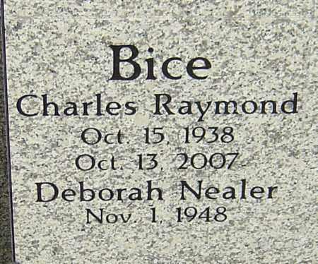 BICE, CHARLES RAYMOND - Franklin County, Ohio | CHARLES RAYMOND BICE - Ohio Gravestone Photos