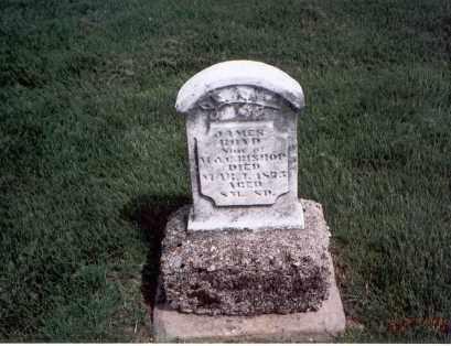 BISHOP, JAMES BOYD - Franklin County, Ohio | JAMES BOYD BISHOP - Ohio Gravestone Photos