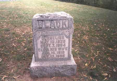 BLACK, ELIZA - Franklin County, Ohio | ELIZA BLACK - Ohio Gravestone Photos