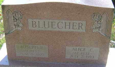 CHAPIN BLUECHER, ALICE - Franklin County, Ohio | ALICE CHAPIN BLUECHER - Ohio Gravestone Photos