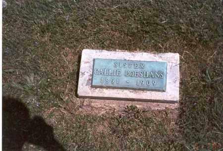 BOESHANS, CALLIE - Franklin County, Ohio | CALLIE BOESHANS - Ohio Gravestone Photos