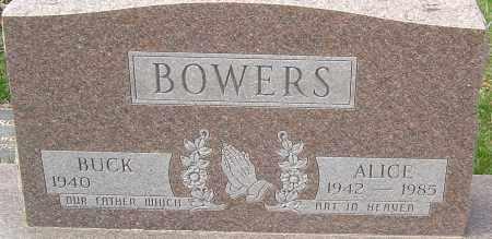 BOWERS, ALICE - Franklin County, Ohio   ALICE BOWERS - Ohio Gravestone Photos