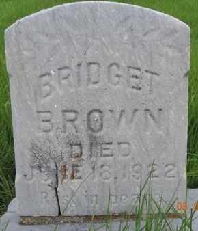 BROWN, BRIDGET - Franklin County, Ohio   BRIDGET BROWN - Ohio Gravestone Photos
