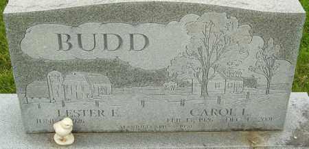 BUDD, CAROL L - Franklin County, Ohio | CAROL L BUDD - Ohio Gravestone Photos