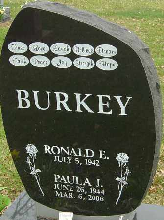 BURKEY, PAULA J - Franklin County, Ohio | PAULA J BURKEY - Ohio Gravestone Photos