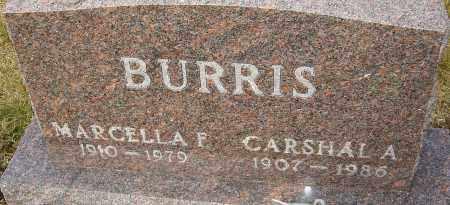 BURRIS, MARCELLA - Franklin County, Ohio | MARCELLA BURRIS - Ohio Gravestone Photos