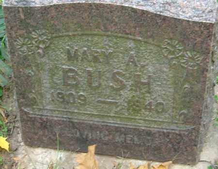 BUSH, MARY A - Franklin County, Ohio   MARY A BUSH - Ohio Gravestone Photos