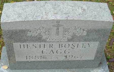 BOSLEY CAGG, HESTER - Franklin County, Ohio | HESTER BOSLEY CAGG - Ohio Gravestone Photos