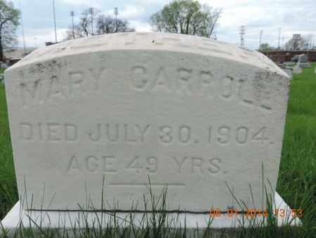 CARROLL, MARY - Franklin County, Ohio | MARY CARROLL - Ohio Gravestone Photos
