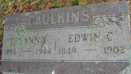 CAULKINS, TEXANNA - Franklin County, Ohio | TEXANNA CAULKINS - Ohio Gravestone Photos