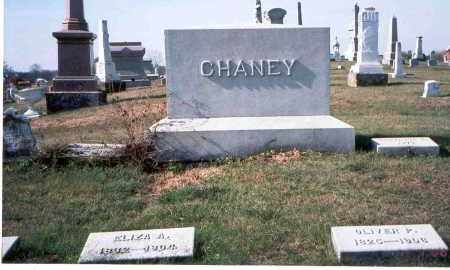 CHANEY, OLIVER P. - Franklin County, Ohio | OLIVER P. CHANEY - Ohio Gravestone Photos