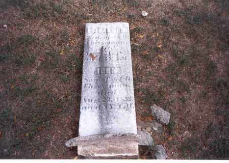 CHEESEMAN, JOHN - Franklin County, Ohio   JOHN CHEESEMAN - Ohio Gravestone Photos