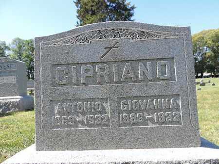 CIPRIANO, GIOVANNA - Franklin County, Ohio | GIOVANNA CIPRIANO - Ohio Gravestone Photos