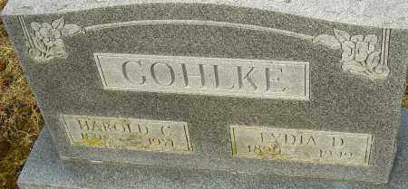 COHLKE, LYDIA D - Franklin County, Ohio | LYDIA D COHLKE - Ohio Gravestone Photos